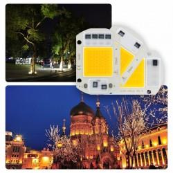 110V - 220V - LED Chip - 10W - 20W - 30W - 50W