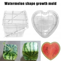 Watermelon Shaping Mold - Heart - Square