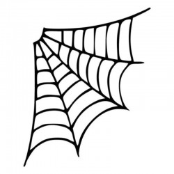 Spider web - car sticker