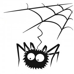 Funny spider web - car sticker